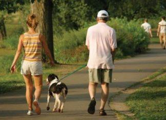 camminare ogni giorno